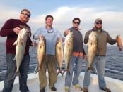 destin-fishing-report-feb-14-2015